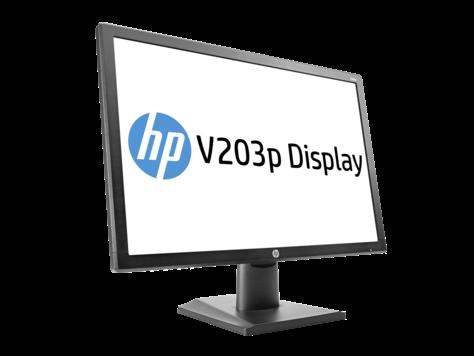 Màn hình HP V203P, 19,5